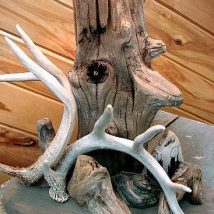Creative Use Of Antlers 16 214x214 - Cool & Creative Use of Antlers