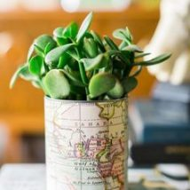 Decoupage Tin Can Planters 3 214x214 - Amazing ideas to Decoupage Tin Can Planters