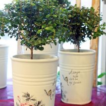 Decoupage Tin Can Planters 32 214x214 - Amazing ideas to Decoupage Tin Can Planters