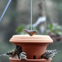 Diy Bird Houses 14 214x214 - 45+ Charming DIY Bird House Ideas For Your Backyard