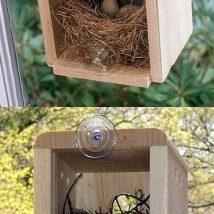 Diy Bird Houses 16 214x214 - 45+ Charming DIY Bird House Ideas For Your Backyard