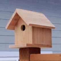 Diy Bird Houses 37 214x214 - 45+ Charming DIY Bird House Ideas For Your Backyard