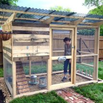 Diy Chicken Coops 1 214x214 - Coolest DIY Chicken Coop Ideas for Your Birds