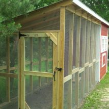 Diy Chicken Coops 11 214x214 - Coolest DIY Chicken Coop Ideas for Your Birds