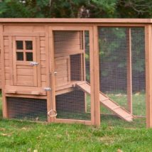 Diy Chicken Coops 12 214x214 - Coolest DIY Chicken Coop Ideas for Your Birds