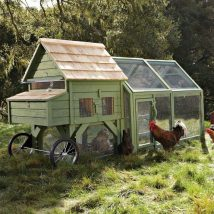 Diy Chicken Coops 13 214x214 - Coolest DIY Chicken Coop Ideas for Your Birds