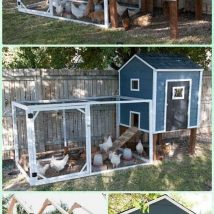 Diy Chicken Coops 14 214x214 - Coolest DIY Chicken Coop Ideas for Your Birds