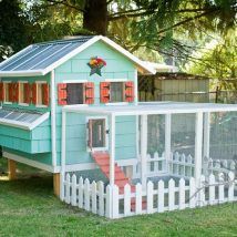 Diy Chicken Coops 20 214x214 - Coolest DIY Chicken Coop Ideas for Your Birds