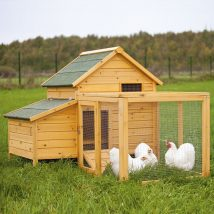 Diy Chicken Coops 23 214x214 - Coolest DIY Chicken Coop Ideas for Your Birds