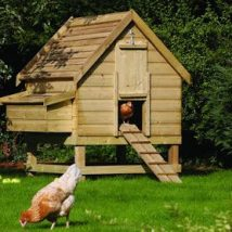 Diy Chicken Coops 24 214x214 - Coolest DIY Chicken Coop Ideas for Your Birds