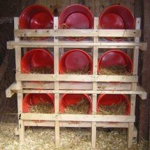 Diy Chicken Coops 3 214x214 - Coolest DIY Chicken Coop Ideas for Your Birds