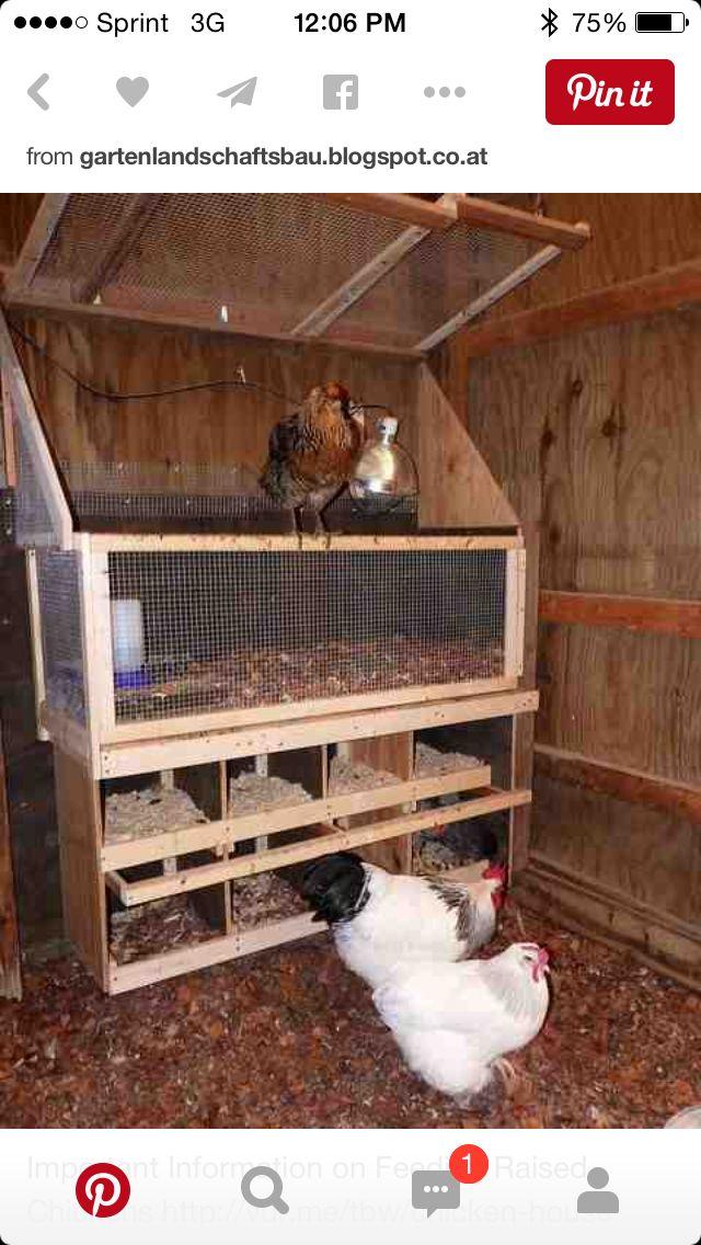 Diy Chicken Coops 30 - Coolest DIY Chicken Coop Ideas For Your Birds