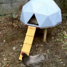 Diy Chicken Coops 33 214x214 - Coolest DIY Chicken Coop Ideas for Your Birds