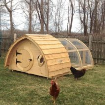 Diy Chicken Coops 34 214x214 - Coolest DIY Chicken Coop Ideas for Your Birds