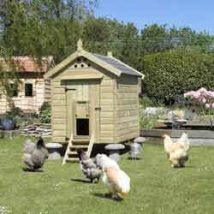 Diy Chicken Coops 36 214x214 - Coolest DIY Chicken Coop Ideas for Your Birds