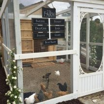 Diy Chicken Coops 4 214x214 - Coolest DIY Chicken Coop Ideas for Your Birds