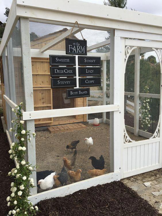 Diy Chicken Coops 4 - Coolest DIY Chicken Coop Ideas For Your Birds