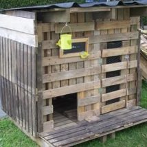 Diy Chicken Coops 44 214x214 - Coolest DIY Chicken Coop Ideas for Your Birds