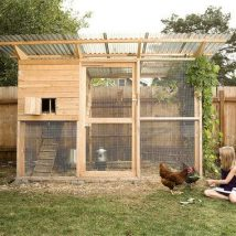 Diy Chicken Coops 49 214x214 - Coolest DIY Chicken Coop Ideas for Your Birds