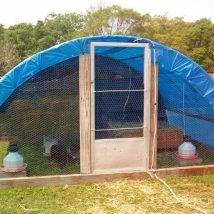 Diy Chicken Coops 51 214x214 - Coolest DIY Chicken Coop Ideas for Your Birds