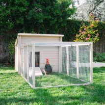 Diy Chicken Coops 6 214x214 - Coolest DIY Chicken Coop Ideas for Your Birds
