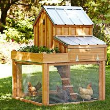 Diy Chicken Coops 7 214x214 - Coolest DIY Chicken Coop Ideas for Your Birds