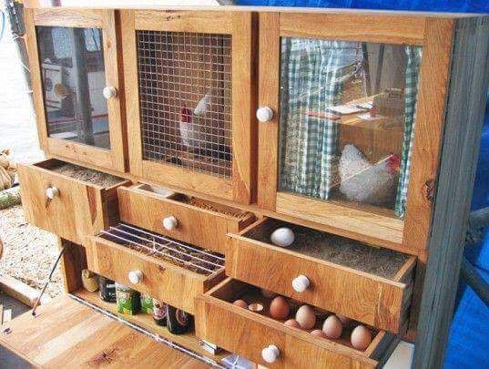 Diy Chicken Coops 8 - Coolest DIY Chicken Coop Ideas For Your Birds