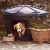 Diy Dog Houses 10 214x214 - 40+ DIY Dog House Ideas Your Dog Will Absolutely Love