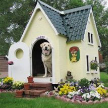 Diy Dog Houses 19 214x214 - 40+ DIY Dog House Ideas Your Dog Will Absolutely Love