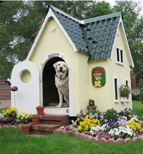Diy Dog Houses 19 - 40+ DIY Dog House Ideas Your Dog Will Absolutely Love