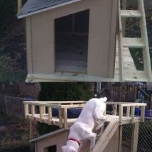 Diy Dog Houses 34 214x214 - 40+ DIY Dog House Ideas Your Dog Will Absolutely Love