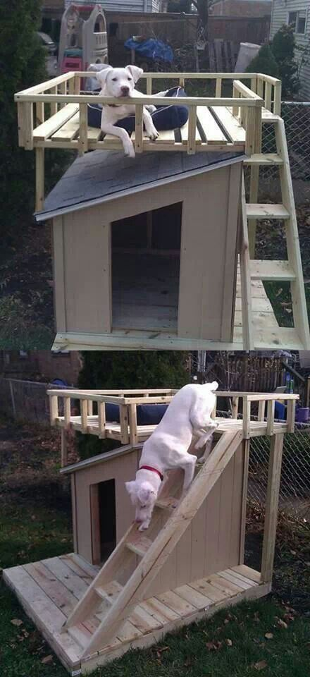 Diy Dog Houses 34 - 40+ DIY Dog House Ideas Your Dog Will Absolutely Love