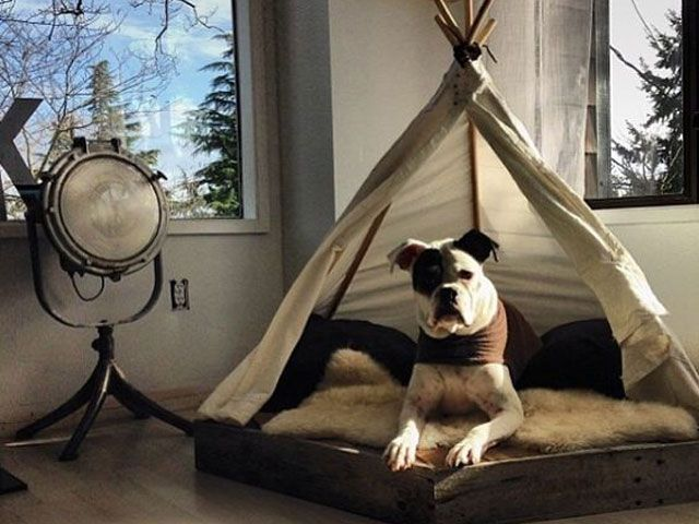Diy Dog Houses 4 - 40+ DIY Dog House Ideas Your Dog Will Absolutely Love
