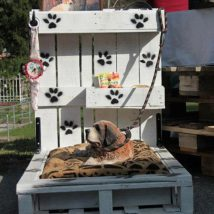 Diy Dog Houses 53 214x214 - 40+ DIY Dog House Ideas Your Dog Will Absolutely Love
