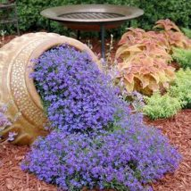 Diy Fairy Gardens 10 214x214 - 50 Magical DIY Fairy Garden Ideas