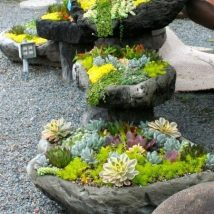 Diy Fairy Gardens 11 214x214 - 50 Magical DIY Fairy Garden Ideas