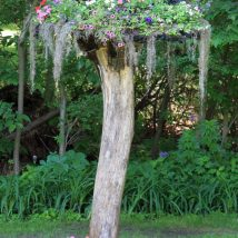 Diy Fairy Gardens 16 214x214 - 50 Magical DIY Fairy Garden Ideas