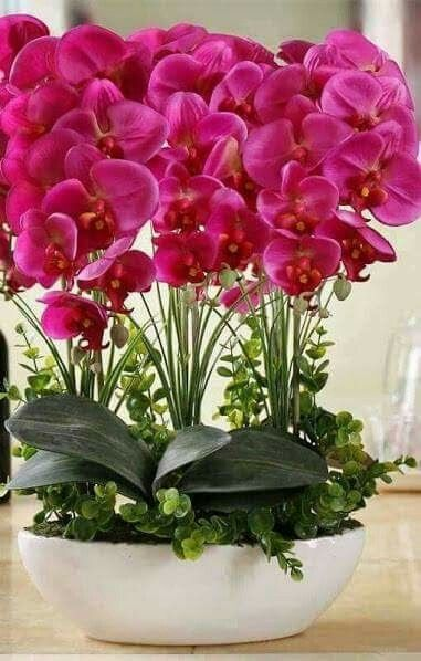 Diy Flower Gardens 50 - Unexpected DIY Flower Gardening Ideas And Planter Projects