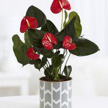 Diy Flower Vases 11 214x214 - 40+ DIY Flower Vases As Pretty As The Flowers Themselves