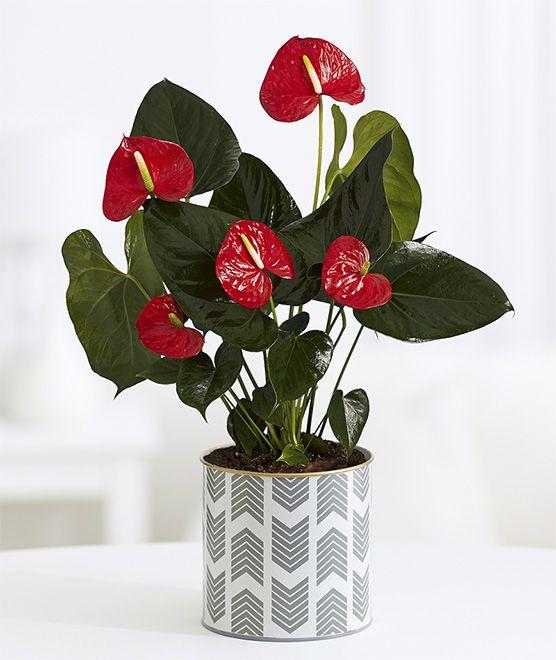Diy Flower Vases 11 - 40+ DIY Flower Vases As Pretty As The Flowers Themselves