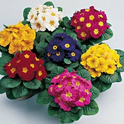Diy Flower Vases 12 - 40+ DIY Flower Vases As Pretty As The Flowers Themselves