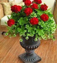 Diy Flower Vases 15 192x214 - 40+ DIY Flower Vases As Pretty As The Flowers Themselves