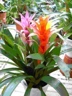 Diy Flower Vases 21 - 40+ DIY Flower Vases As Pretty As The Flowers Themselves
