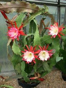 Diy Flower Vases 24 - 40+ DIY Flower Vases As Pretty As The Flowers Themselves