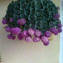 Diy Flower Vases 25 214x214 - 40+ DIY Flower Vases As Pretty As The Flowers Themselves
