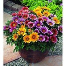 Diy Flower Vases 31 214x214 - 40+ DIY Flower Vases As Pretty As The Flowers Themselves