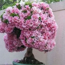 Diy Flower Vases 44 214x214 - 40+ DIY Flower Vases As Pretty As The Flowers Themselves