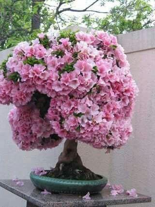 Diy Flower Vases 44 - 40+ DIY Flower Vases As Pretty As The Flowers Themselves