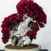 Diy Flower Vases 46 214x214 - 40+ DIY Flower Vases As Pretty As The Flowers Themselves