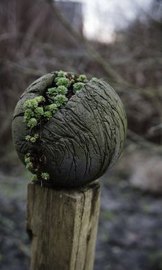 Diy Garden Globes 27 - 44+ Super Interesting DIY Garden Globes Ideas